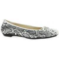 Chaussures Femme Ballerines / babies Elizabeth Stuart Ballerines cuir python Blanc