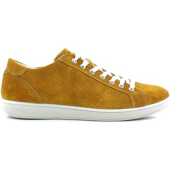 Chaussures Homme Baskets basses Igi&co 7676 Sneakers Man Jaune Jaune