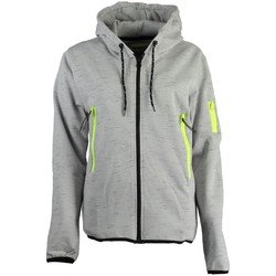 Vêtements Femme Sweats Geographical Norway Sweat à  capuche Femme Fashionista Gris Clair