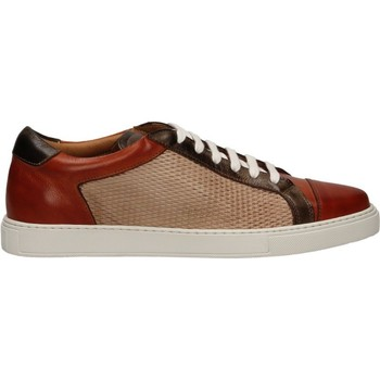 Chaussures Homme Running / trail Brecos CRUST MISSING_COLOR