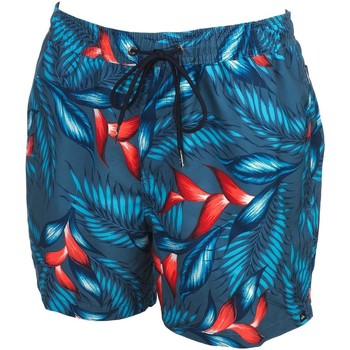 Vêtements Homme Maillots / Shorts de bain Quiksilver Paradise point volley 15 Bleu pétrole