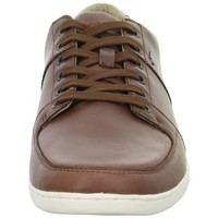 Chaussures Homme Baskets basses Boxfresh Spencer Icn Marron