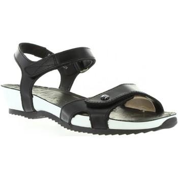 Chaussures Femme Sandales et Nu-pieds Panama Jack DANIA B&W B1 Negro