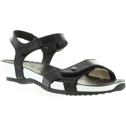 Chaussures Femme Sandales et Nu-pieds Panama Jack DANIA BW B1 Negro