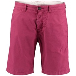 Vêtements Homme Shorts / Bermudas O'neill Short  Lm Friday Night Chino - Beajolais Violet