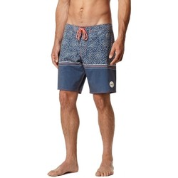 Vêtements Homme Maillots / Shorts de bain O'neill Boardshort  Pm For The Ocean - Blue Aop W Bleu