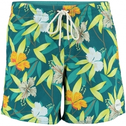Vêtements Homme Shorts / Bermudas O'neill Short De Bain  Thirst For Surf Green Vert