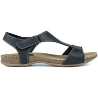 Chaussures Femme Sandales et Nu-pieds Interbios SANDAL BLACK