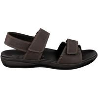 Chaussures Homme Sandales et Nu-pieds Mephisto Sandales SIMON Marron