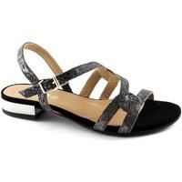 Chaussures Femme Sandales et Nu-pieds Igi&co  Nero