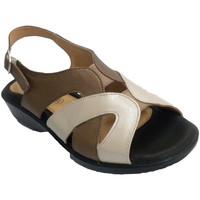 Chaussures Femme Sandales et Nu-pieds Doctor Cutillas Sandale Femme tons beige brun et très co azul