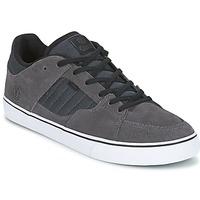 Chaussures Homme Chaussures de Skate Element GLT2 Gris / Blanc