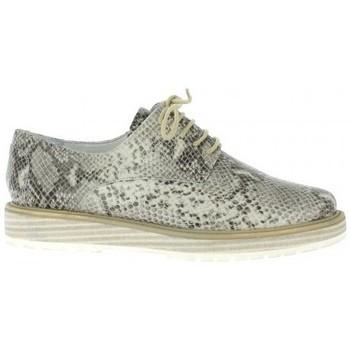 Chaussures Femme Derbies Elizabeth Stuart Derby cuir python Taupe