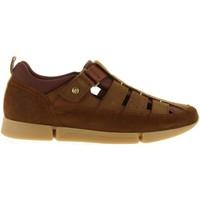Chaussures Homme Sandales et Nu-pieds Panama Jack ALBATROSS C4 Marrón