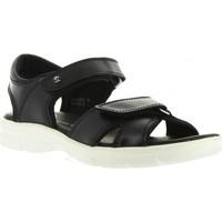 Chaussures Homme Sandales et Nu-pieds Panama Jack SANDERS BW C1 Negro