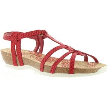 Chaussures Femme Sandales et Nu-pieds Panama Jack DORI RUN B5 Rojo