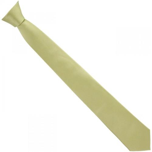 Vêtements Homme Cravates et accessoires Andrew Mac Allister cravate en soie classic vert Vert