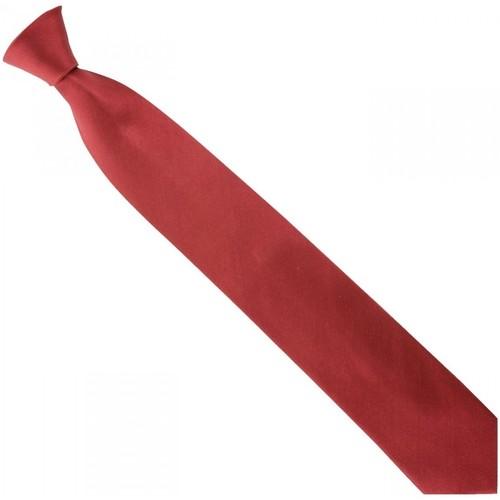 Vêtements Homme Cravates et accessoires Emporio Balzani cravate en soie unie bordeaux Bordeaux