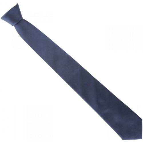Vêtements Homme Cravates et accessoires Emporio Balzani cravate en soie unie bleu Bleu