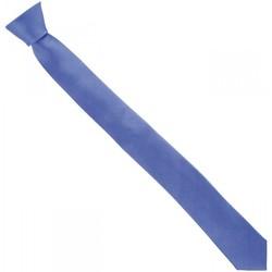 Vêtements Homme Cravates et accessoires Andrew Mac Allister cravate en soie slim bleu Bleu