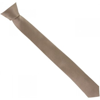 Vêtements Homme Cravates et accessoires Andrew Mac Allister cravate en soie slim marron Marron