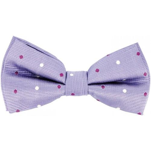 Vêtements Homme Cravates et accessoires Andrew Mc Allister noeud papillon bowtie parme Parme