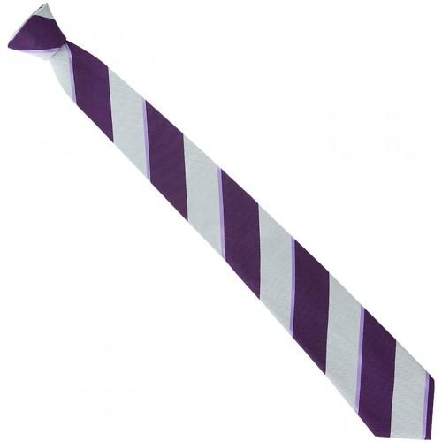 Vêtements Homme Cravates et accessoires Emporio Balzani cravate en soie club violet Violet