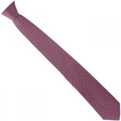 Vêtements Homme Cravates et accessoires Emporio Balzani cravate en soie jacquard bordeaux Bordeaux