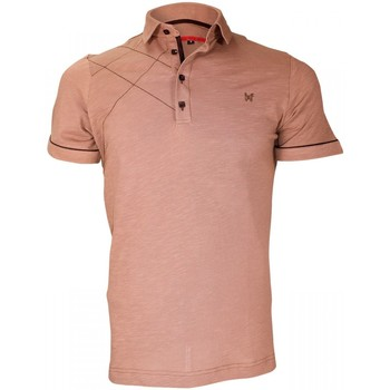 Vêtements Homme Polos manches courtes Andrew Mac Allister chemise brodee plymouth marron Marron