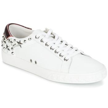 Chaussures Femme Baskets basses Ash DAZED White / Bordeaux