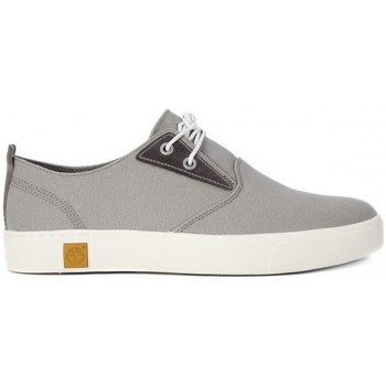 Chaussures Homme Baskets basses Timberland AMHERST PTO Grigio