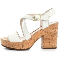 Chaussures Femme Sandales et Nu-pieds Stonefly 108331  Femme White White