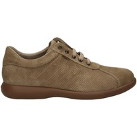 Chaussures Homme Richelieu Frau SUEDE MISSING_COLOR