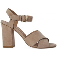 Chaussures Femme Sandales et Nu-pieds Carmens Padova ONTARIO CIPRIA    111,4