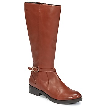 Chaussures Femme Bottes ville Betty London HOVANI Camel