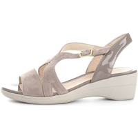 Chaussures Femme Sandales et Nu-pieds Stonefly 108235  Femme Taupe Taupe