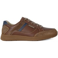 Chaussures Homme Baskets basses Mephisto Frank Washed