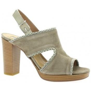 Chaussures Femme Sandales et Nu-pieds Donna Più Nu pieds cuir velours Taupe