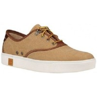 Chaussures Homme Baskets mode Timberland AMHERST OXFORD Autres