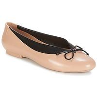 Chaussures Femme Ballerines / babies Melissa JUST DANCE Beige