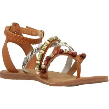 Chaussures Femme Sandales et Nu-pieds Gioseppo 40485 marron