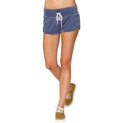 Vêtements Femme Shorts / Bermudas Element Short  Trinity - Navy Bleu