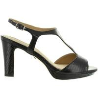 Chaussures Femme Sandales et Nu-pieds Maria Mare 66206 Negro