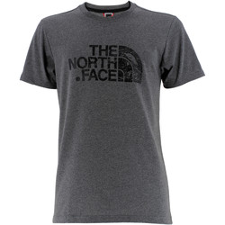 Vêtements Homme T-shirts manches courtes The North Face Woodcut Dome Grey Heather