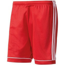 Vêtements Femme Shorts / Bermudas adidas Originals Short Squadra 17 Kids
