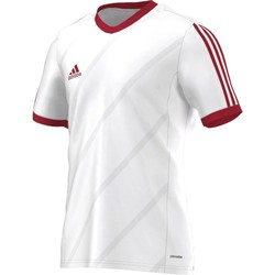 Vêtements Homme T-shirts manches courtes adidas Originals Tabela 14 Climalite Junior Blanc