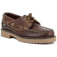 Chaussures Homme Chaussures bateau Snipe 21201 Marron