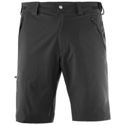 Vêtements Homme Shorts / Bermudas Salomon Short  Wayfarer Short M Forged Iron Anthracite