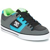 Chaussures Homme Chaussures de Skate DC Shoes PURE Gris / Vert / Bleu
