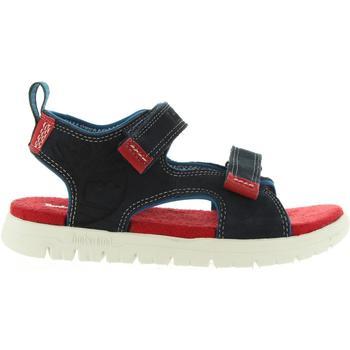 Chaussures Enfant Sandales et Nu-pieds Timberland A1LOF PIERMONT Azul